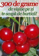 """Foto: """"Super fructele"""" verii – VIŞINELE!"""