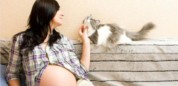 Infecţia cu toxoplasma gondi în timpul sarcinii