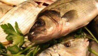 Peștele este periculos!