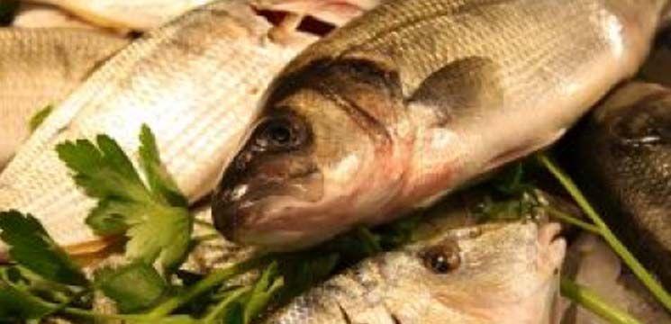Foto: Peștele este periculos!