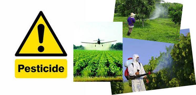 Top alimente ce conțin cele mai mari reziduuri de pesticide