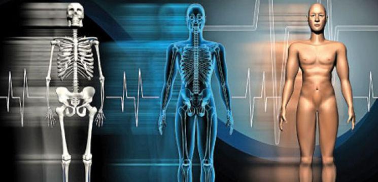 Reacții ale corpului tău și explicarea lor