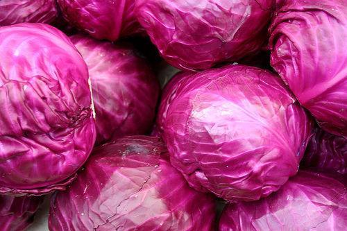 Imagini pentru varză rosie