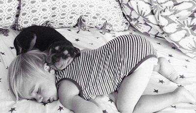 Imagini amuzante, un copil nu poate dormi fară câinele său!