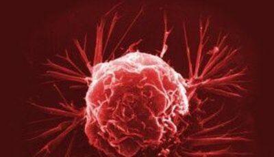 Studiu: 40% dintre cancere sunt provocate de virusuri