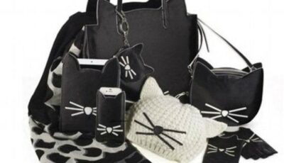 Karl Lagerfeld a creat o colecție inspirată de pisica sa