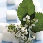 Foto: Eşti dependentă de zahăr? Iată cu ce îl poţi înlocui