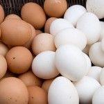 Foto: Care este adevărata diferență între ouăle albe și cele maro