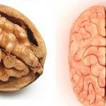 Foto: Vezi cât de izbitor seamănă alimentele cu organele corpului uman