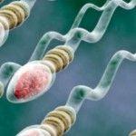 Foto: Beneficiile spermei pentru organism