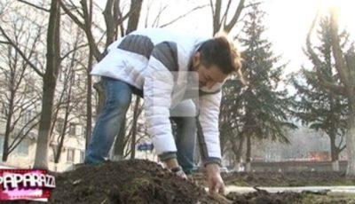 Adrian Ursu a sădit un pom în fața Maternității!