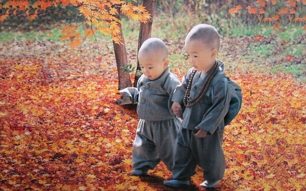 tibet kids Reguli de bază în educația tibetană, valabile pentru oricare copil
