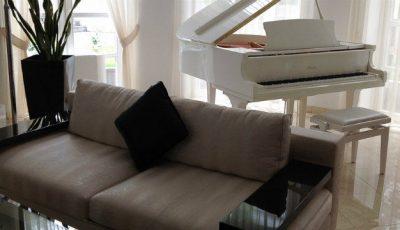 Poze: Casa lui Filat și Gonța! Costă aproape 2 milioane de euro!