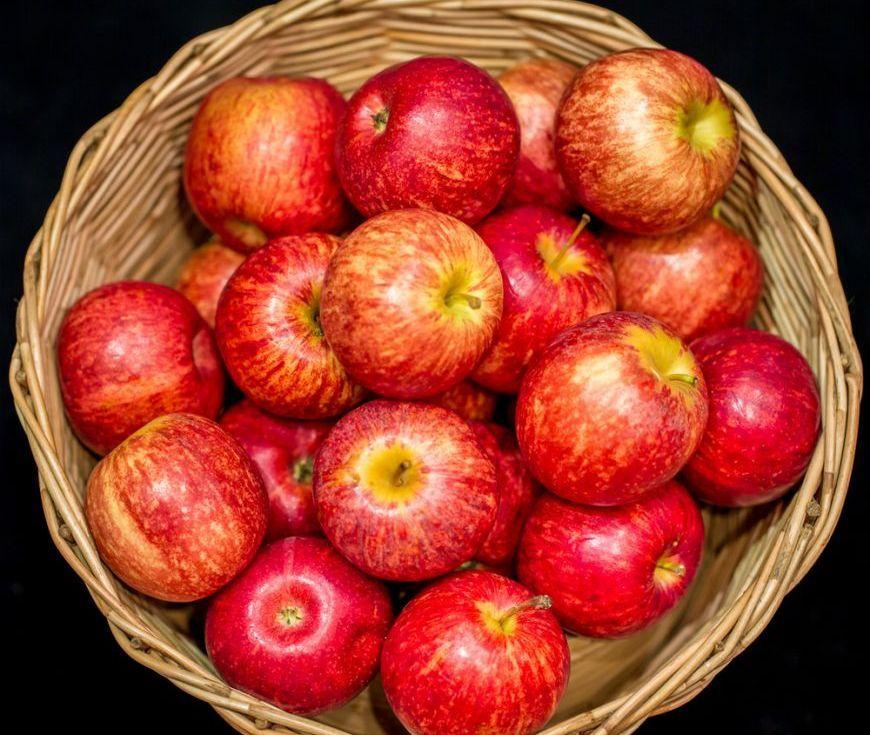 retete de sezon 3 feluri cu mere la care nici nu te gandeai 1 size1 Merele apără bacteriile ,,prietenoase'' din intestin
