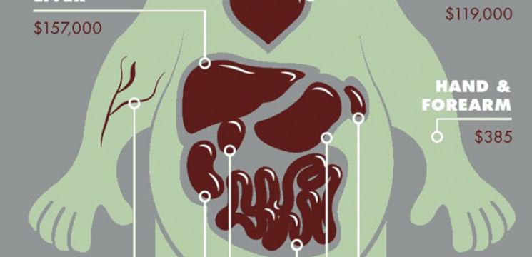 Foto: Afacere macabră! Cât valorează organele umane pe piața neagră
