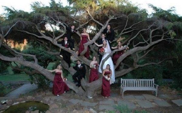 Cele mai amuzante, dar și ridicole poze de la nuntă!