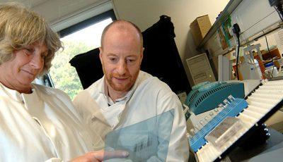 Noul medicament împotriva hepatitei C va apărea pe piață la sfârșitul acestui an