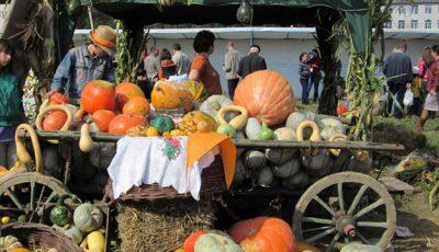Satul Lozova e în pregătiri! Ce vă așteaptă la Bostaniada 2014?