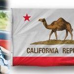 """Foto: Alex Gurdila: """"California nu e ca-n filme,  e mai ieftin să cumperi un bacs de bere, decât de apă potabilă"""""""