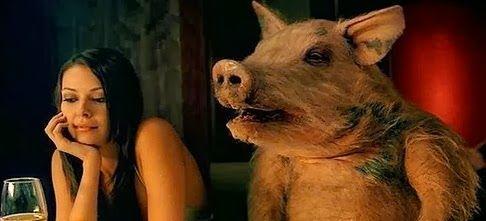 Barbatii sunt porci dar imi place soriciul