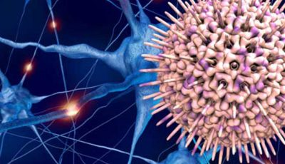 Virusul periculos care distruge creierul. 90% dintre adulți îl au