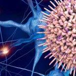 Foto: Virusul periculos care distruge creierul. 90% dintre adulți îl au