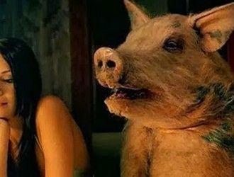 Ipocrizia masculină – când porcii visează la dive