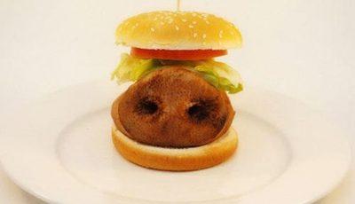 Un fotograf îţi arată ce conţine în realitate mâncarea de la fast food