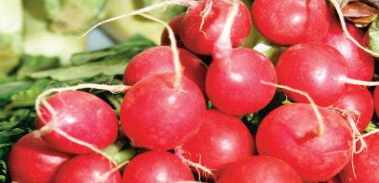 Foto: Ridichile roşii scad colesterolul, luptă cu tumorile şi infecţiile urinare
