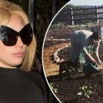 Foto: Lady Gaga îşi creşte singură legumele în grădină!