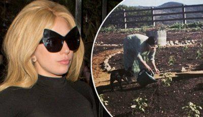 Lady Gaga îşi creşte singură legumele în grădină!
