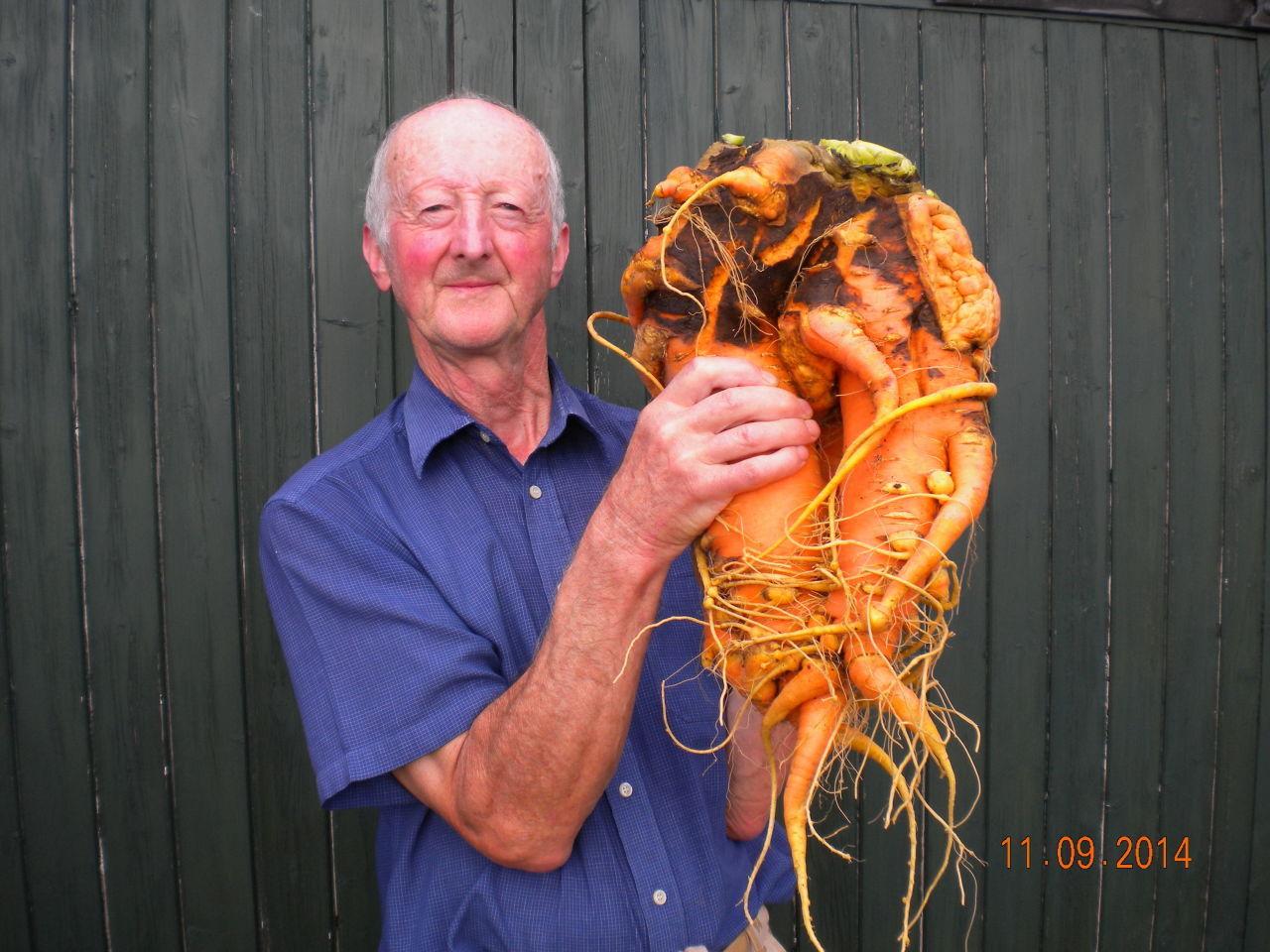 gallery-1433786890-heaviest-carrot