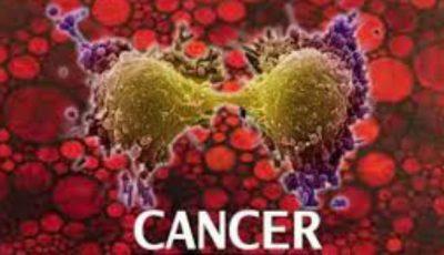 O nouă teorie în lumea medicală despre apariţia cancerului