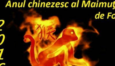 Horoscop chinezesc 2016: Ce îți rezervă astrele în funcție de anul în care ești născut!