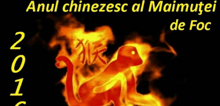 Foto: Horoscop chinezesc 2016: Ce îți rezervă astrele în funcție de anul în care ești născut!