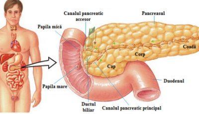 4 rețete de tratare eficientă a pancreasului, ținute în umbră de doctori…