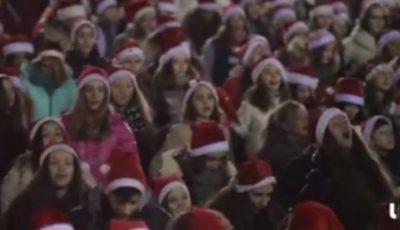 Zeci de crăciunei și crăciunițe au dansat în PMAN!
