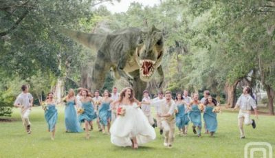 """Organizaţi un fel de """"foto bingo""""… idei pentru o petrecere de nuntă amuzantă"""