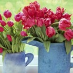 Foto: Cum să faci ca florile să nu se ofilească mult timp!