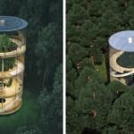 Foto: Această casă din sticlă a devenit virală pe internet!