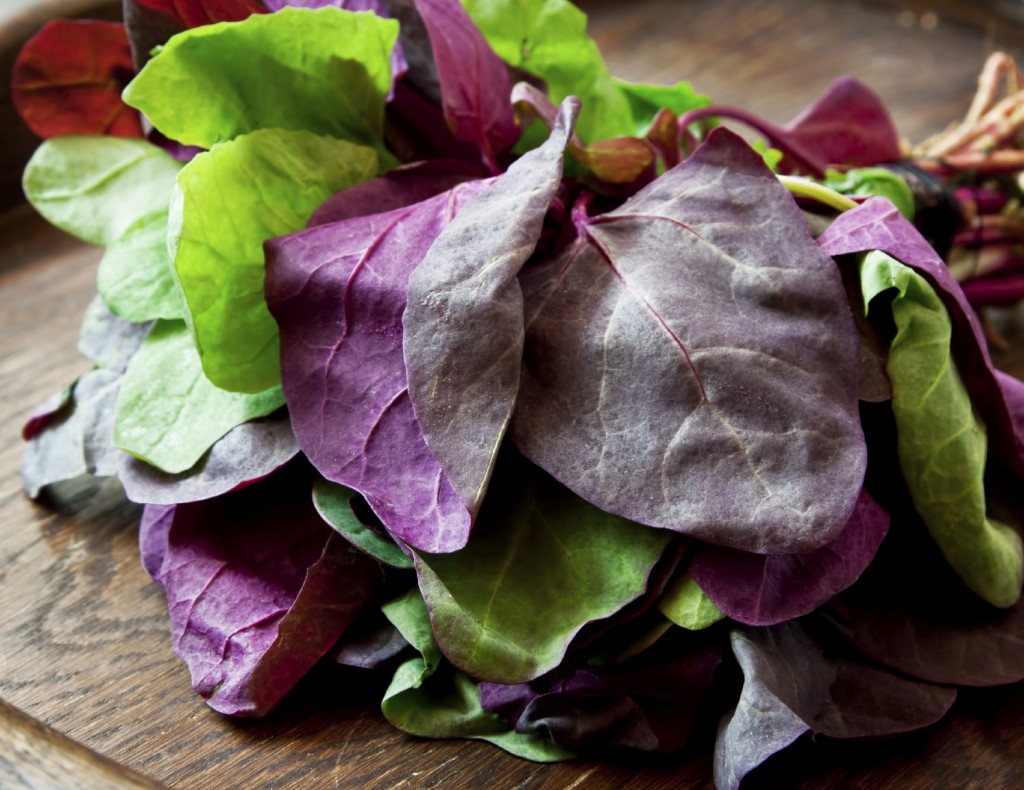 Fresh Orach Leaves, Healthy Vegetable on Wooden Background