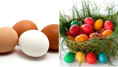 Ouă albe sau maronii? Care sunt mai bune la vopsit