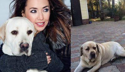 După moartea Janei Friske, câinele interpretei s-a îmbolnăvit de aceeaşi boală, de care a suferit vedeta!