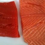 Foto: Iată cum deosebeşti fileul somonului crescut în condiţii naturale de cel al peştelui de crescătorie