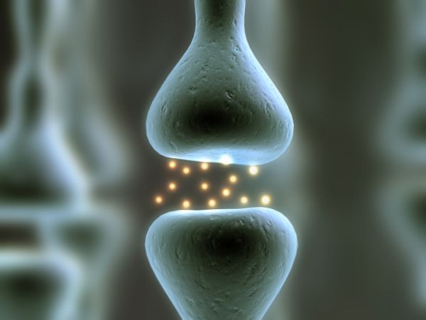 Strengthening-bones-calcium-vitamin-D-contributes11