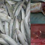 Foto: Patru tone de peşte, infestat cu viermele Anisakis, retrase de la vânzare!