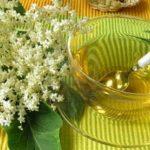 Foto: Florile de soc elimină toxinele, excesul de mucus şi ajută la slăbit