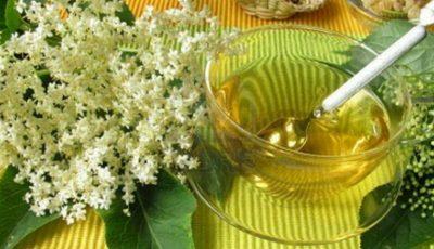 Florile de soc elimină toxinele, excesul de mucus şi ajută la slăbit