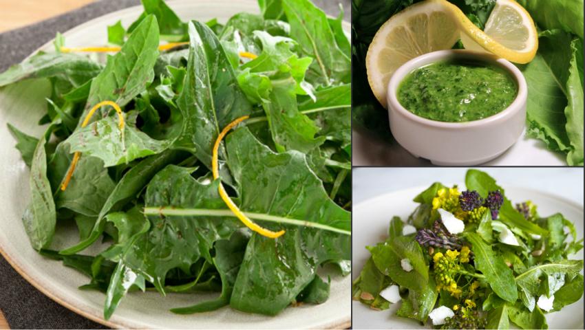 Foto: Salata de măcriş îmbunătăţeşte funcţia glandei tiroide