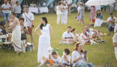 Ce îi așteaptă pe vizitatorii Lavender Fest 2016!